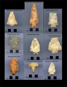 Metavolcanic Projectile Points